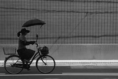 September 2019_79 (Satoshi Kondo) Tags: bw bnw blackandwhite blackandwhitephotography blackandwhitephoto bnwphoto bwphoto bnwphotography bwphotography blackandwhitepoto blackandwhitepotography monochrome leica leicam3 leicaphoto leicaworld street streetphoto streetsnap streetphotography summicron snap streets summicron50mm 50mm filmphotography filmphoto filmcamera filmpoto filmpotography flimphotography film kodak kodaktx400