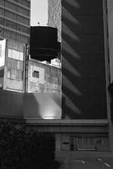 September 2019_77 (Satoshi Kondo) Tags: bw bnw blackandwhite blackandwhitephotography blackandwhitephoto bnwphoto bwphoto bnwphotography bwphotography blackandwhitepoto blackandwhitepotography monochrome leica leicam3 leicaphoto leicaworld street streetphoto streetsnap streetphotography summicron snap streets summicron50mm 50mm filmphotography filmphoto filmcamera filmpoto filmpotography flimphotography film kodak kodaktx400
