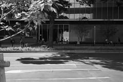 September 2019_70 (Satoshi Kondo) Tags: bw bnw blackandwhite blackandwhitephotography blackandwhitephoto bnwphoto bwphoto bnwphotography bwphotography blackandwhitepoto blackandwhitepotography monochrome leica leicam3 leicaphoto leicaworld street streetphoto streetsnap streetphotography summicron snap streets summicron50mm 50mm filmphotography filmphoto filmcamera filmpoto filmpotography flimphotography film kodak kodaktx400