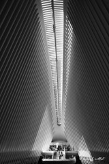 Cathedral (mimo b. rokket) Tags: abstract abstrakt architecture modern abstraktearchitektur modernarchitecture modernearchitektur contemporary monochrome monochrom lightinarchitecture licht lichteinfall bw blacknwhite blackandwhite schwarzweis sw newyork newyorkcity nyc santiagocalatrava calatrava linien lines transithub theoculus manhattan interior innenraum interiorarchitecture geometrie geometry geometrischeformen lowkey