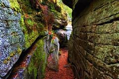 Denecourt - Colinet 11 blue trail (hbensliman.free.fr) Tags: travel pentax nature france fontainebleau foliage pentaxart pentaxk1 landscape forest