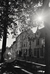 (CroytaqueCie) Tags: foma fomapan fomapan400 minolta minoltadynax4 streetphotography blackandwhite 흑백 黑白 чёрнобелое noiretblanc argentique pellicule
