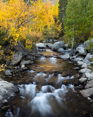 Bishop Creek, Middle Fork (Kurt Lawson) Tags: aspen autumn bishop boulders california creek eastern fall golden middle mountains nevada quaking reflection rocks sierra stream trees
