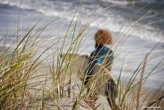 Obscured.... (Joe Hengel) Tags: obscured atlanticcity nj newjersey outdoor ocean atlanticcitynj waves water afternoon fall dunes dune dunegrass seagrass atlanticocean