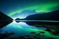 Noche de auroras (Ricardo Sanz Lezcano) Tags: northernlights auroraboreal norway noruega nocturna sky stars estrellas reflejos landscape largaexposicion longexposure