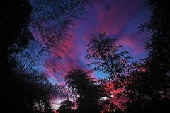 MOTHER NATURE WAS PLAYING HOLI THIS EVENING (GOPAN G. NAIR [ GOPS Creativ ]) Tags: gopsorg gopangnair gops gopan gopsphotography creativ colours colors sky colorful colourful holi nature heavenly clouds