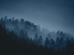 Vosges (R.Fred) Tags: vosges foret brouillard nuage pluie automne fantastique