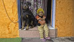 Waiting for sunday (Renate Bomm) Tags: agra child color dog farbig hund india junge kind orange perro renatebomm sigma16mmf1 sonyilce6000 sigma16mmf14 arte colors