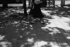 September 2019_49 (Satoshi Kondo) Tags: blackandwhitephoto