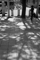 September 2019_48 (Satoshi Kondo) Tags: blackandwhitephoto