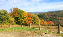View From My Bicycle (Len Radin) Tags: fall autumn leaves mountains posts deciduous bicycle berkshire berkshires gg williamstown massachusetts berkshirecounty foliage beehill