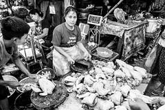 Poultry Stall in B&W (Foto John) Tags: leica leicasl leicasl601 leicasltyp601 mirrorless leica2490mmf284asphvarioelmaritsllens people woman women child boy market poultry streetphotography monochrome blackwhite blackandwhite yangon myanmar burma asia