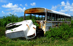 School Bus (Lyndon Henry) Tags: school bus bluebird vieuxfort stlucia international abandon derelict