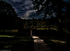The garden of light and darkness (Neil. Moralee) Tags: neilmoralee garden wall colour color dark sinister evil light cloud darkness knightshayes devon uk tree trees shadows low key lowkeycolour neil moralee olymus omd em5 sky whicked fear path pathway country countryside landscape