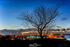 """""""Sunset at Nacala Porto"""", High dynamic range, Long Exposure, Nacala Porto, Mozambique  """"Pôr do sol em Nacala Porto"""" Dinâmica de alto alcance, Longa Exposição, Nacala Porto, Moçambique (paulomarquesfotografia) Tags: sunset nacala porto high dynamic range long exposure mozambique pôr do sol em dinâmica de alto alcance longa exposição moçambique sony a7 petri 28mm f2 paulo marques nuvens clouds arrasto drag arvore tree silhueta silhouette"""