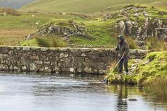Fly Fisherman (jimsumo999) Tags: llynndwarchen snowdonia angler fisherman fly lake wales sport rod net