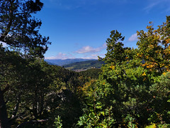 Vue sur la vallée de Walbach depuis le sommet de l'Ehrbergkopf (Πichael C.) Tags: turckheim randonnée balade hike alsace 67 visite tourisme village
