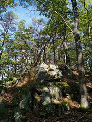 Formation rocheuse près du sommet de l'Ehrbergkopf (Πichael C.) Tags: turckheim randonnée balade hike alsace 67 visite tourisme village