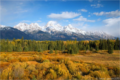 Teton Range (Sandra Lipproß) Tags: usa mountains fall nature landscape nationalpark outdoor fallcolors fallfoliage rockymountains wyoming grandteton tetonrange blacktailponds blue sky clouds sunny autumn travel grandtetonnationalpark