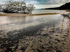 Shallow (MaryMarthaK) Tags: greatlakes beach lakemichigan water antrim upnorth michigan unlimitedphotos flickritis