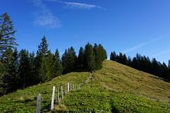 DSC02674 (Bergwandern Alpen) Tags: alpen alps bergwandern hiking nüssen kantonschwyz gratweg berglandschaft zaun fence