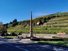 Le Monument de Turenne et les vignes en terrasse de la Cave de Turckheim (Πichael C.) Tags: turckheim randonnée balade hike alsace 67 visite tourisme village
