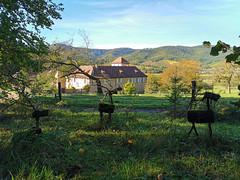 Jolies sculptures de rennes en bois (Πichael C.) Tags: turckheim randonnée balade hike alsace 67 visite tourisme village