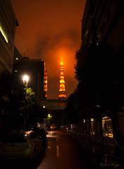 Burning sky (DameBoudicca) Tags: tokyo tokio 東京 japan nippon nihon 日本 japón japon giappone natt night nacht nuit notte noche 夜 tokyotower 東京タワ shibakōen 芝公園 港区 minato