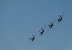 aerobatic flight demonstration team (pbo31) Tags: sanfrancisco california fleetweek nikon d810 color october 2019 boury pbo31 blueangels flight aviation navy naval plane blue maneuver hornet fa 18