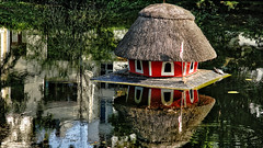 Bird house or turtle house? (rainerpetersen657) Tags: pond water reflection turtle bremen sony sonyalpha carlzeiss vintagelens oldlens 135mm sonnar135mm carlzeisssonnar135mm