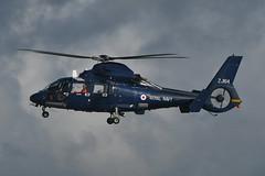 ZJ164 Aerospatiale SA365N2 Dauphin EGPK 12-10-19 (MarkP51) Tags: scotland airport aircraft airliner prestwick pik egpk sunny 2 dauphin royalnavy aerospatiale sa365n2 zj164 sunshine nikon d500 nikon200500f56vr military helicopter