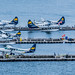 2019 - HAL Alaska Cruise - 3 - Harbour Air in Coal Harbour