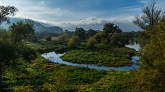 The Land of the Lord of the Rings (Ranildum) Tags: land landscape river sky grass tree trees morava sandberg devinskakobyla devinskanovaves bratislava austria rakúsko beautiful beautifulland