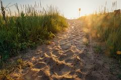 Cape Cod Sunrise (BrianEden) Tags: grass capecod beach sunrise light massachusetts sand harwich chatham jackknifecove