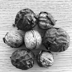 humble harvest (Rosmarie Voegtli) Tags: modest humble frugal walnuts nuts blackwhite blackandwhite bw morningwalk hiking dornach square walnuss baumnuss herbst autumn automne autunno