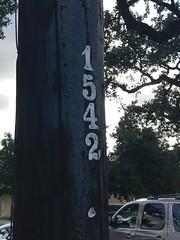 # 1542 (shark44779011) Tags: 1542