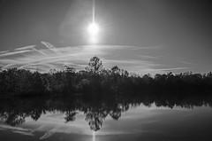 Morning Has Broken (aaron_gould) Tags: outside natur nature naturephotography nikkor lake reflection bw blackandwhite sunlight trees fall autumn water tree ohio monochrome