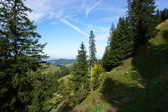 DSC02939 (Bergwandern Alpen) Tags: alpen alps bergwandern hiking kantonschwyz wanderweg berglandschaft trail