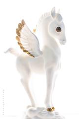 Snow White Pegasus (Theresa Finley) Tags: snowsnowwhitethings10112019 smileonsaturday whiteinbacklight horse pegusus greekmythology highkey