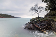 Autumn Steps Babbacombe (Coless66) Tags: westcountry tree babbacombe torquay longexposure seaview seascape canon7d 1020mm leefilters manfrotto hightide sunrise autumn beautiful freedom calm lephotography devoncoast mind treescape seaside steps sea