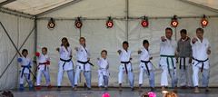 We_Are_Botkyrka_2019-08-25_052_ARGB (Viktor_K79) Tags: viärbotkyrka wearebotkyrka 2019 botkyrka hågelby celebration outdoor children botkyrkashukokai karate