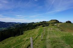 DSC02991 (Bergwandern Alpen) Tags: alpen alps bergwandern hiking büelhöchi berglandschaft hügellandschaft kantonschwyz hills