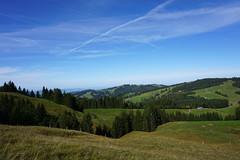 DSC03041 (Bergwandern Alpen) Tags: alpen alps bergwandern hiking sattelegg kantonschwyz berglandschaft hügellandschaft kondensstreifen landscape hills
