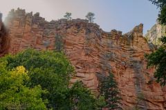 Oct102019_3928 (Patrick Dirlam) Tags: arizona trips westforkoakcreektrail sedona