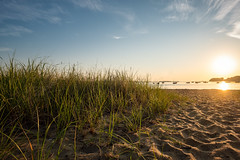 Jacknife Cove (BrianEden) Tags: grass capecod beach sunrise light massachusetts sand harwich chatham jackknifecove