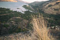 the edge (annapolis_rose) Tags: oregon rowenacrestviewpoint columbiarivergorge columbiariver
