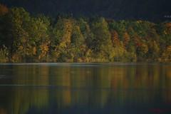 IMG_3612 (ChPflügl) Tags: salzburg österreich austria autumn fall herbst spazieren puch bei hallein urstein sunshine altweibersommer salzach kitsch chpflügl chpfluegl christian europe europa eu world erde
