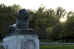 Sir George Etienne Cartier Monument (charlespilon) Tags: montreal quebec canada lion statue sun soleil sunset coucher de arbres trees grass herbe