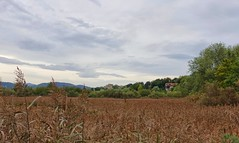 Nubes y calor (eitb.eus) Tags: eitbcom 16599 g1 tiemponaturaleza tiempon2019 gipuzkoa hondarribia josemariavega