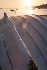 Morning dew (BrianEden) Tags: rowboat capecod chatham massachusetts sunrise harwich beach jackknifecove